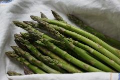 asparagus-761223_1280