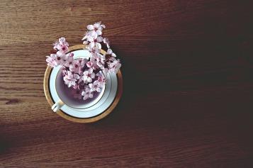 spring-2174751_1280